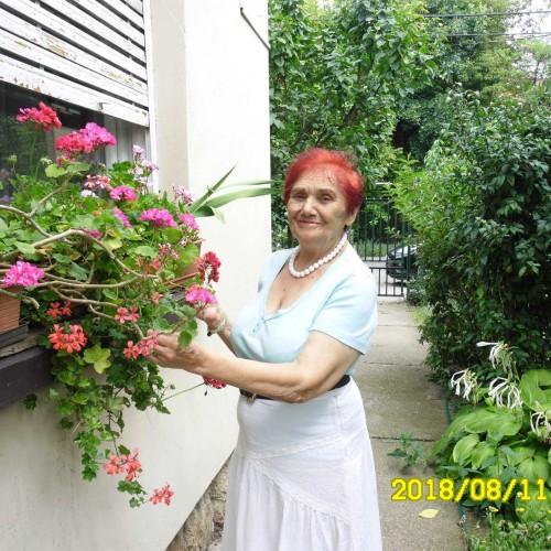 Társkereső adatai: SnéZsóka, Nő 78